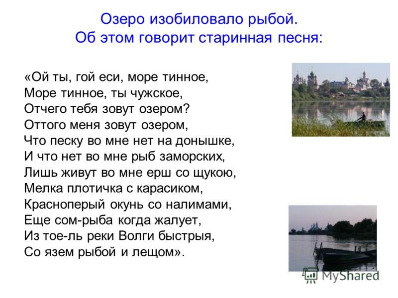 Озеро изобиловало рыбой. Об этом говорит старинная песня: «Ой ты, гой еси, море тинное, Море тинное, ты чужское, Отчего тебя зовут озером? Оттого меня зовут озером, Что песку во мне нет на донышке, И что нет во мне рыб заморских, Лишь живут во мне ер