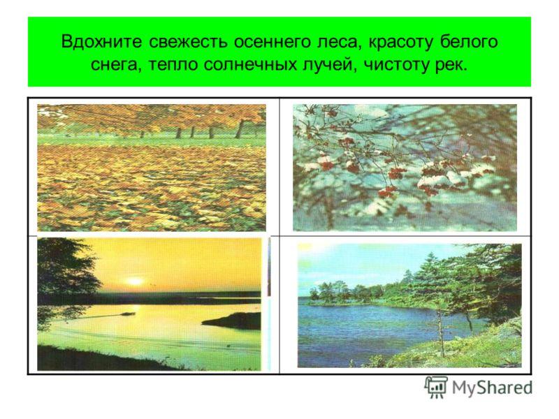 Вдохните свежесть осеннего леса, красоту белого снега, тепло солнечных лучей, чистоту рек.