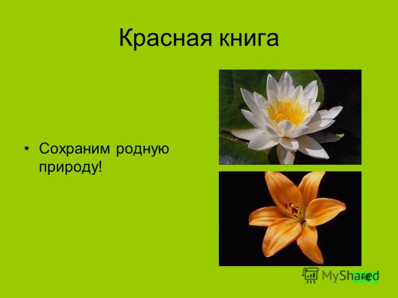 Красная книга Сохраним родную природу!