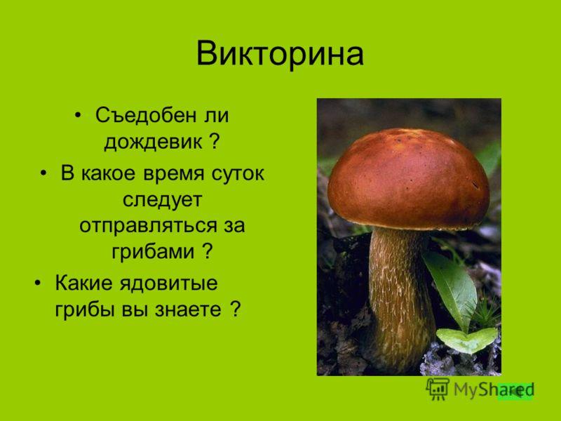 Викторина Съедобен ли дождевик ? В какое время суток следует отправляться за грибами ? Какие ядовитые грибы вы знаете ?