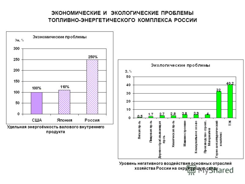 ЭКОНОМИЧЕСКИЕ И ЭКОЛОГИЧЕСКИЕ ПРОБЛЕМЫ ТОПЛИВНО-ЭНЕРГЕТИЧЕСКОГО КОМПЛЕКСА РОССИИ Удельная энергоёмкость валового внутреннего продукта Уровень негативного воздействия основных отраслей хозяйства России на окружающую среду
