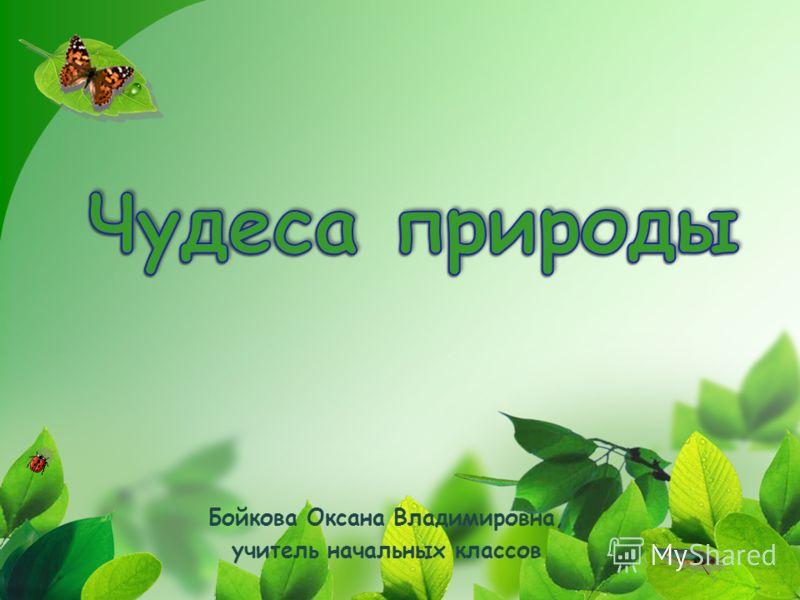 Бойкова Оксана Владимировна, учитель начальных классов