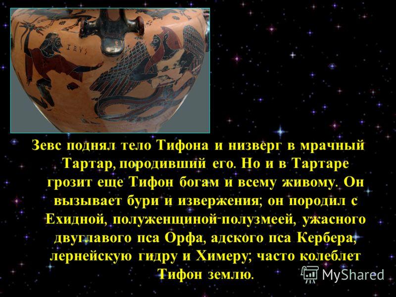 Зевс поднял тело Тифона и низверг в мрачный Тартар, породивший его. Но и в Тартаре грозит еще Тифон богам и всему живому. Он вызывает бури и извержения ; он породил с Ехидной, полуженщиной - полузмеей, ужасного двуглавого пса Орфа, адского пса Кербер