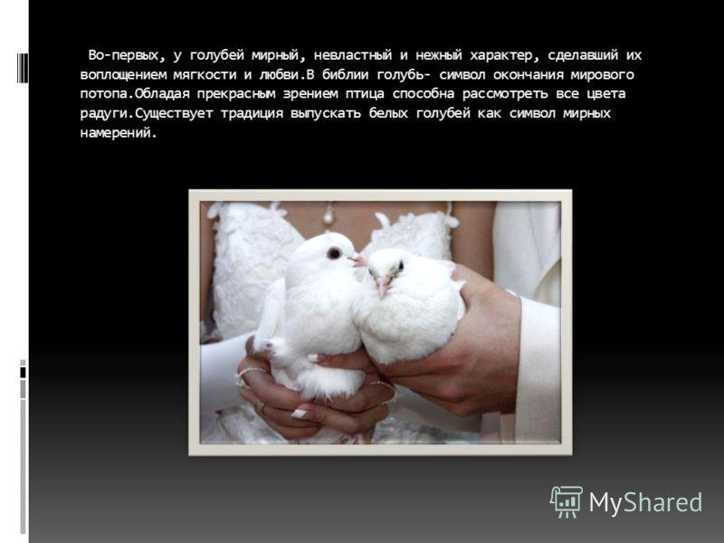 Во-первых, у голубей мирный, невластный и нежный характер, сделавший их воплощением мягкости и любви.В библии голубь- символ окончания мирового потопа.Обладая прекрасным зрением птица способна рассмотреть все цвета радуги.Существует традиция выпускат
