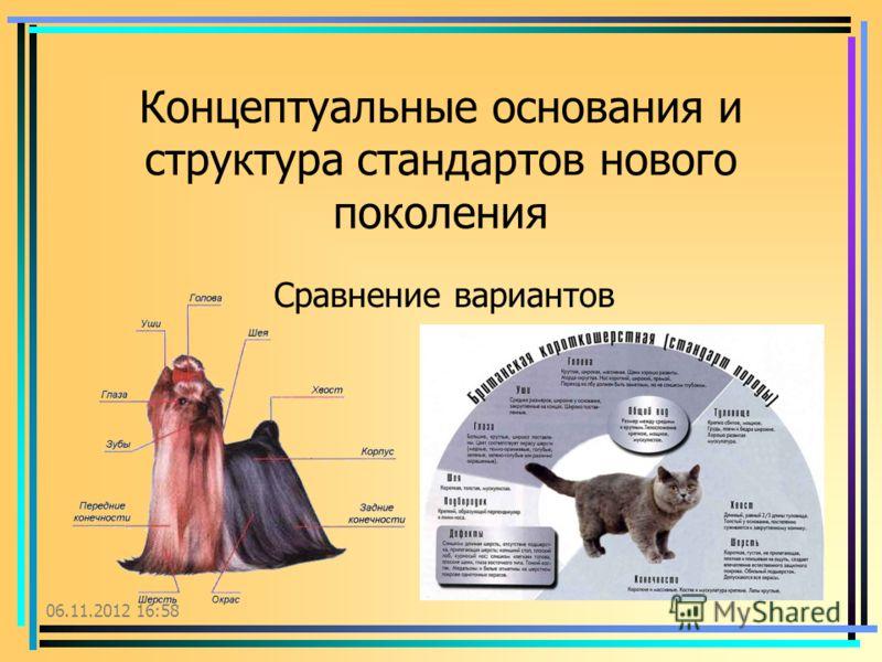 06.11.2012 17:00 Концептуальные основания и структура стандартов нового поколения Сравнение вариантов