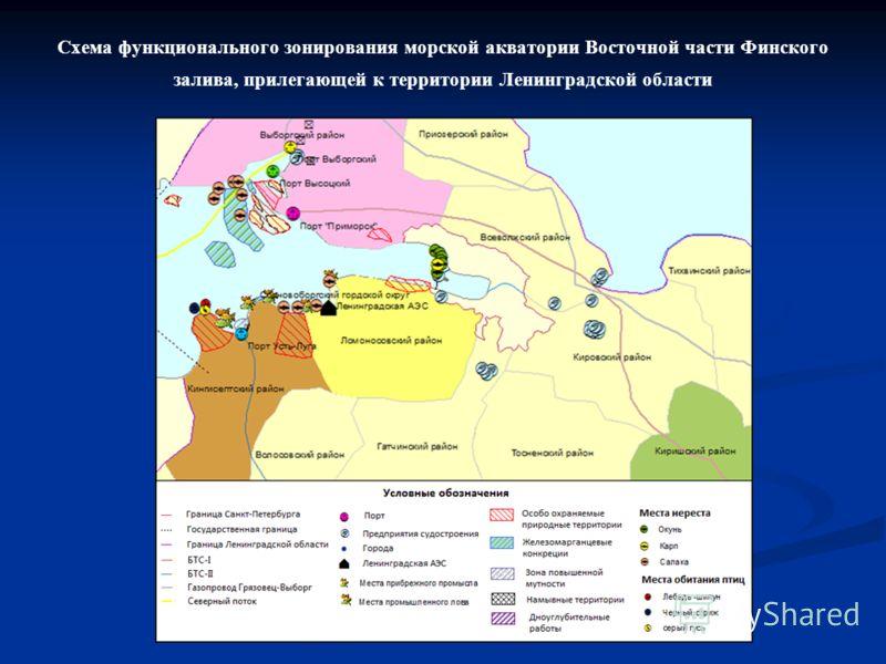 Схема функционального зонирования морской акватории Восточной части Финского залива, прилегающей к территории Ленинградской области