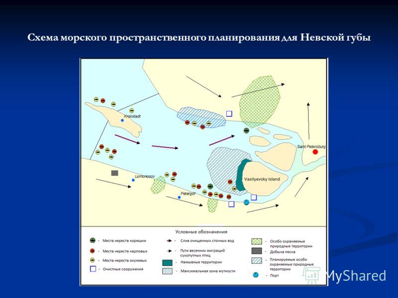 Схема морского пространственного планирования для Невской губы