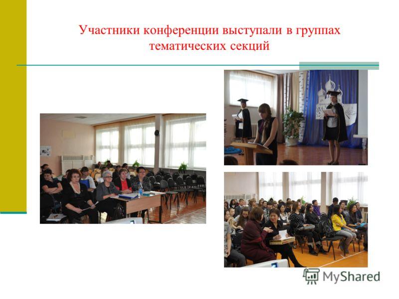 Участники конференции выступали в группах тематических секций