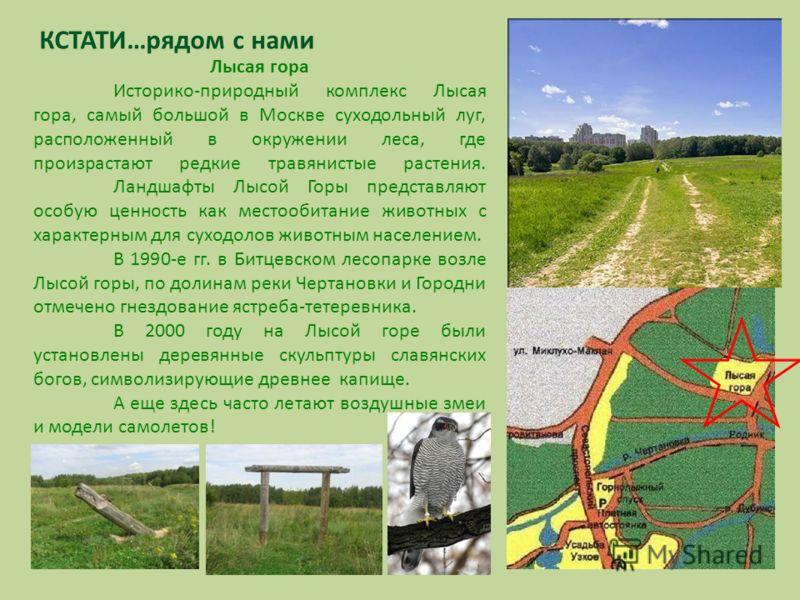 КСТАТИ…рядом с нами Лысая гора Историко-природный комплекс Лысая гора, самый большой в Москве суходольный луг, расположенный в окружении леса, где произрастают редкие травянистые растения. Ландшафты Лысой Горы представляют особую ценность как местооб