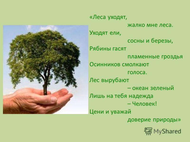 «Леса уходят, жалко мне леса. Уходят ели, сосны и березы, Рябины гасят пламенные гроздья Осинников смолкают голоса. Лес вырубают – океан зеленый Лишь на тебя надежда – Человек! Цени и уважай доверие природы»