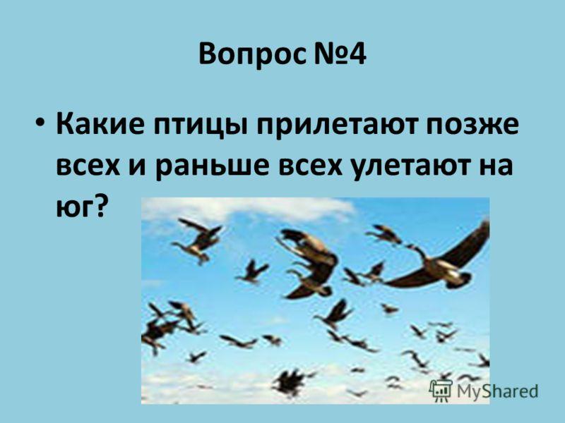 Вопрос 4 Какие птицы прилетают позже всех и раньше всех улетают на юг?