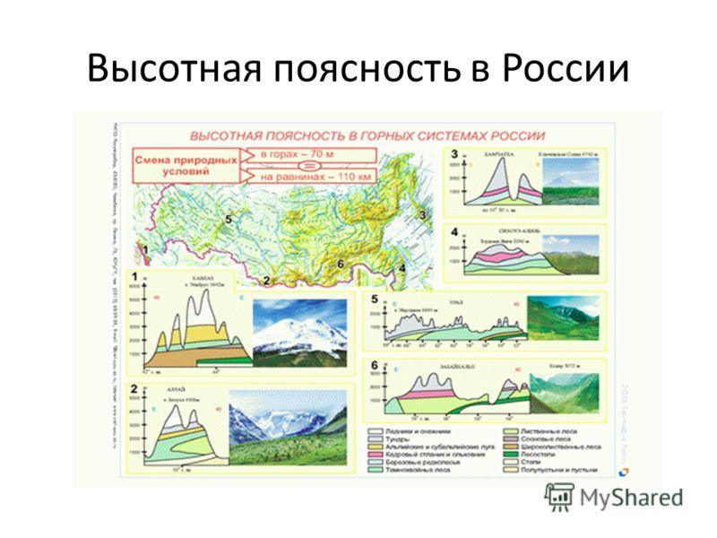 Высотная поясность в России