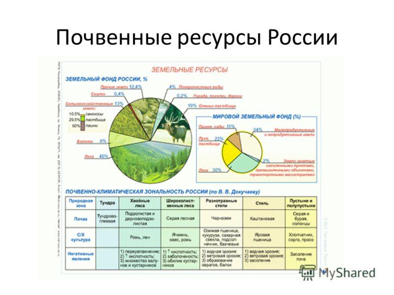 Почвенные ресурсы России