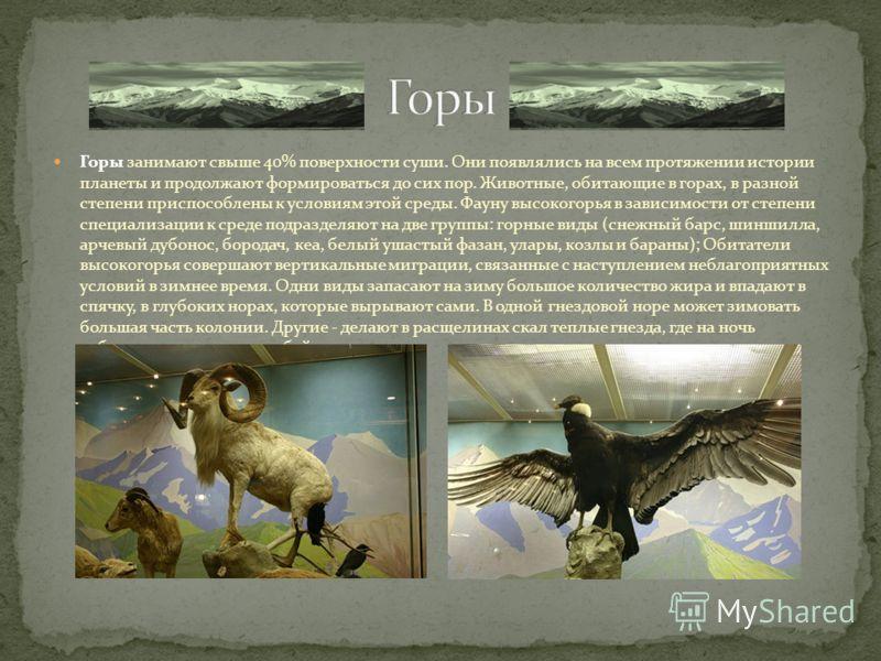 Горы занимают свыше 40% поверхности суши. Они появлялись на всем протяжении истории планеты и продолжают формироваться до сих пор. Животные, обитающие в горах, в разной степени приспособлены к условиям этой среды. Фауну высокогорья в зависимости от с