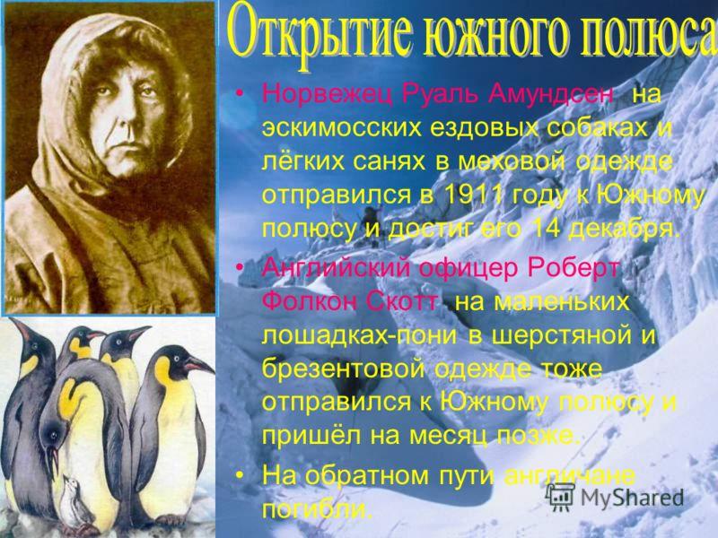 Норвежец Руаль Амундсен на эскимосских ездовых собаках и лёгких санях в меховой одежде отправился в 1911 году к Южному полюсу и достиг его 14 декабря. Английский офицер Роберт Фолкон Скотт на маленьких лошадках-пони в шерстяной и брезентовой одежде т