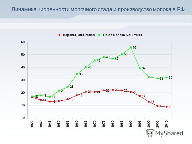 Динамика численности молочного стада и производство молока в РФ