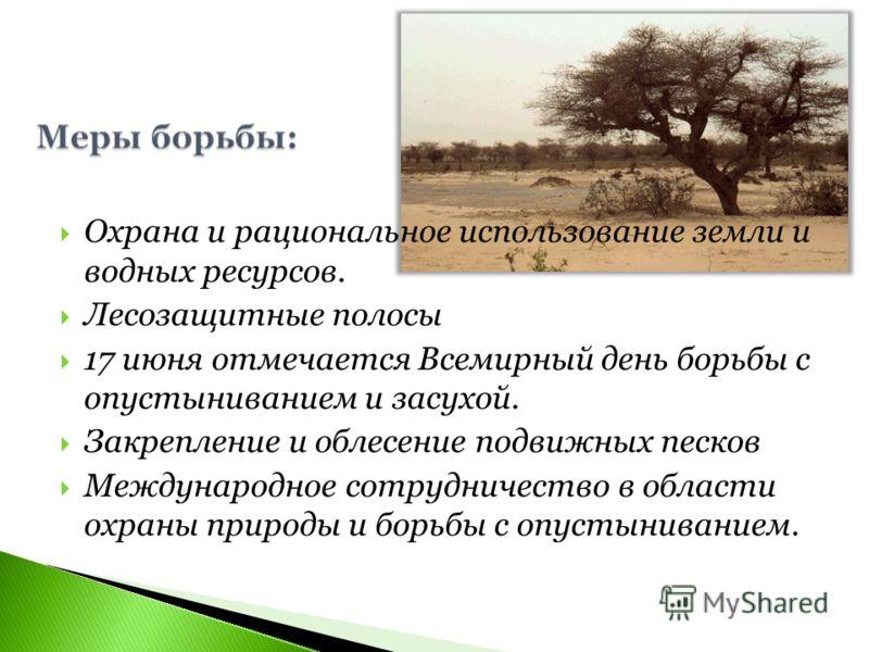 Охрана и рациональное использование земли и водных ресурсов. Лесозащитные полосы 17 июня отмечается Всемирный день борьбы с опустыниванием и засухой. Закрепление и облесение подвижных песков Международное сотрудничество в области охраны природы и бор