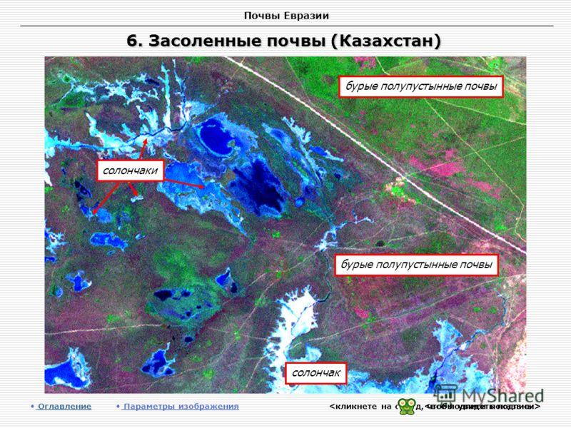 Почвы Евразии 6. Засоленные почвы (Казахстан) Оглавление Оглавление Параметры изображения солончак бурые полупустынные почвы солончаки