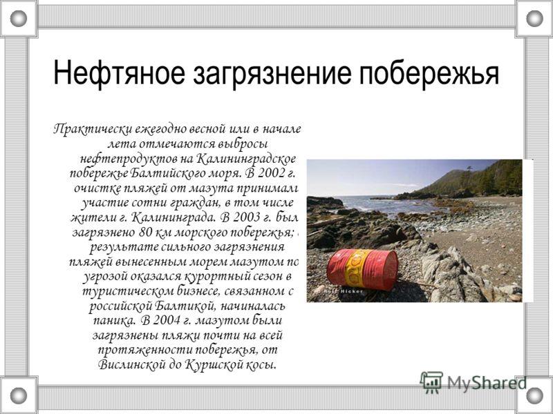 Нефтяное загрязнение побережья Практически ежегодно весной или в начале лета отмечаются выбросы нефтепродуктов на Калининградское побережье Балтийского моря. В 2002 г. в очистке пляжей от мазута принимали участие сотни граждан, в том числе жители г.