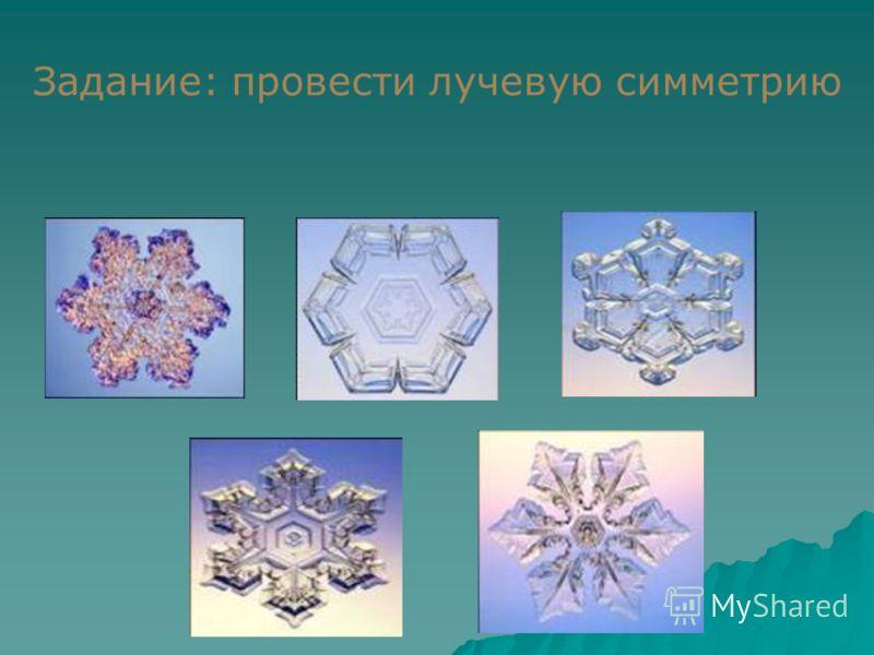 Задание: провести оси симметрии на живых объектах
