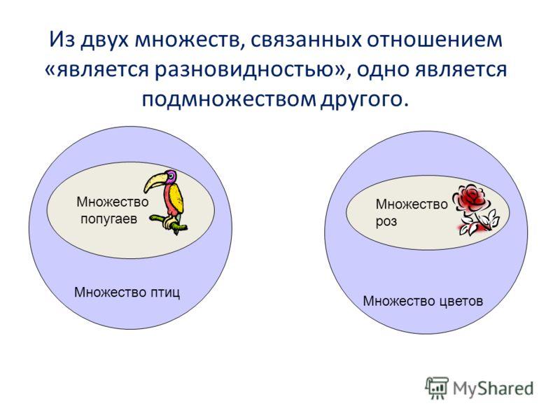 Множество птиц Множество попугаев Из двух множеств, связанных отношением «является разновидностью», одно является подмножеством другого. Множество цветов Множество роз