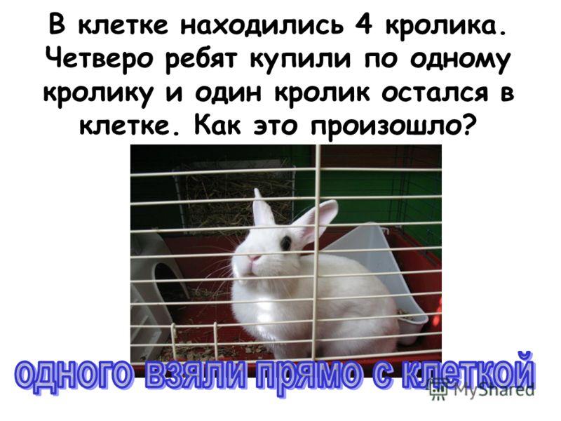 В клетке находились 4 кролика. Четверо ребят купили по одному кролику и один кролик остался в клетке. Как это произошло?