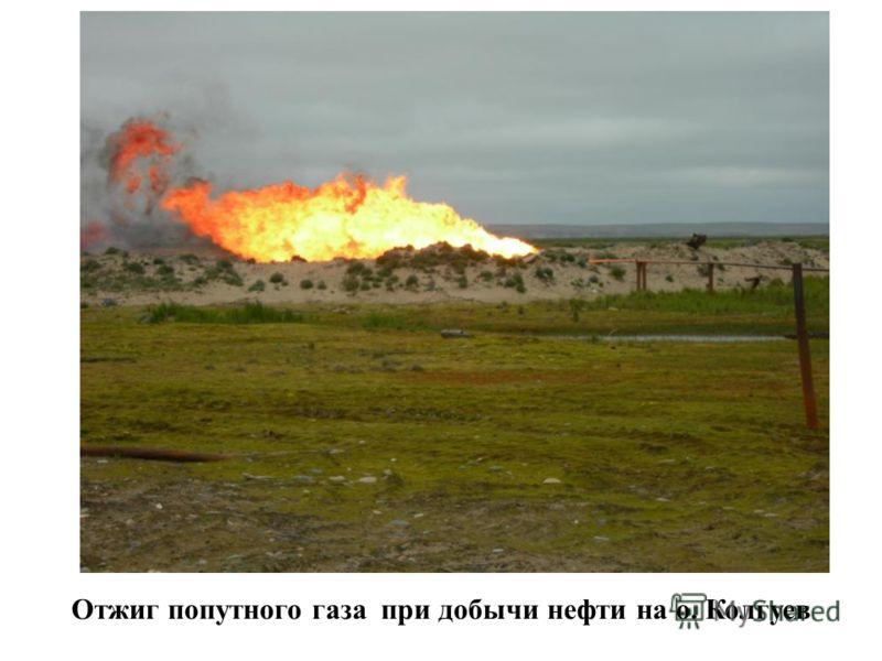Отжиг попутного газа при добычи нефти на о. Колгуев