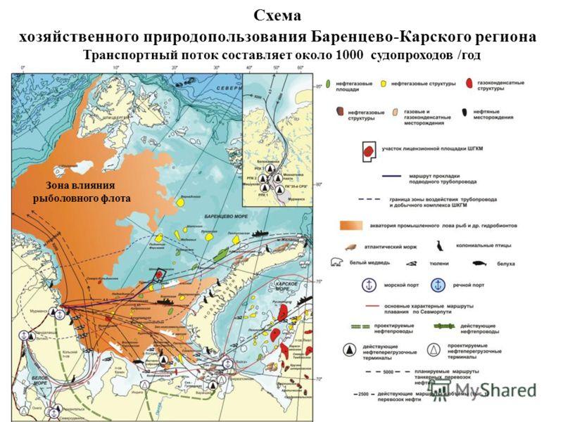 Схема хозяйственного природопользования Баренцево-Карского региона Зона влияния рыболовного флота Транспортный поток составляет около 1000 судопроходов /год