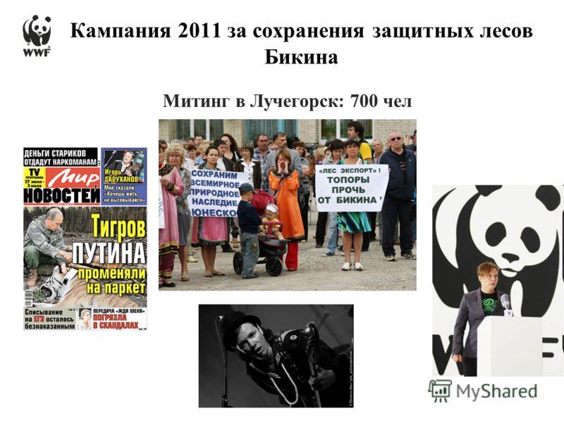 Митинг в Лучегорск: 700 чел Кампания 2011 за сохранения защитных лесов Бикина