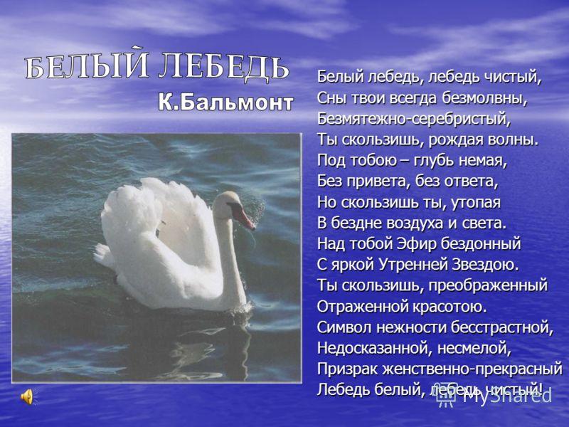 Белый лебедь, лебедь чистый, Сны твои всегда безмолвны, Безмятежно-серебристый, Ты скользишь, рождая волны. Под тобою – глубь немая, Без привета, без ответа, Но скользишь ты, утопая В бездне воздуха и света. Над тобой Эфир бездонный С яркой Утренней