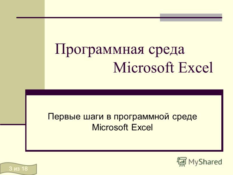 Программная среда Microsoft Excel Первые шаги в программной среде Microsoft Excel 3 из 18