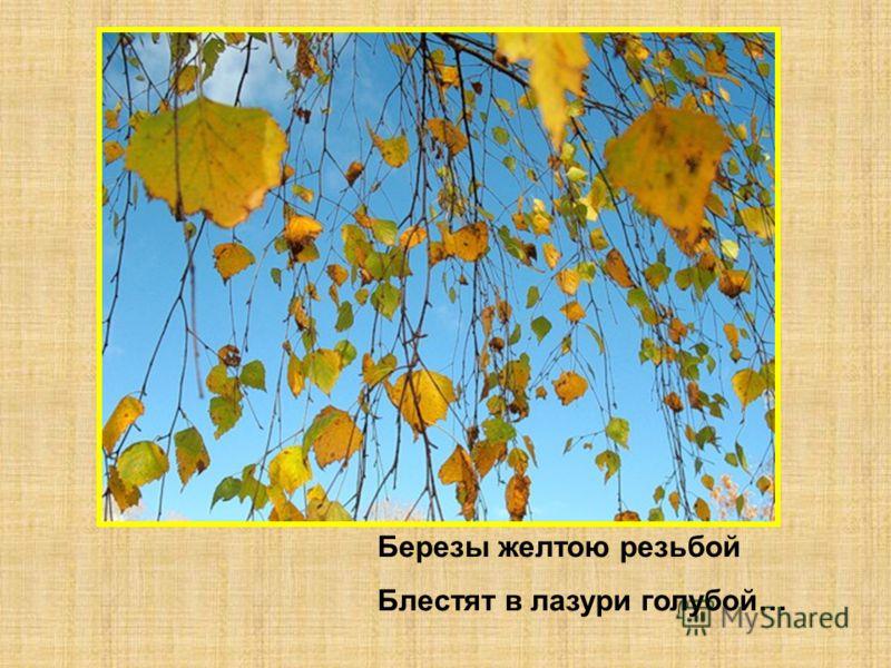Березы желтою резьбой Блестят в лазури голубой…