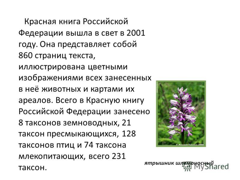Красная книга Российской Федерации вышла в свет в 2001 году. Она представляет собой 860 страниц текста, иллюстрирована цветными изображениями всех занесенных в неё животных и картами их ареалов. Всего в Красную книгу Российской Федерации занесено 8 т