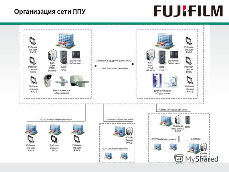 Организация сети ЛПУ