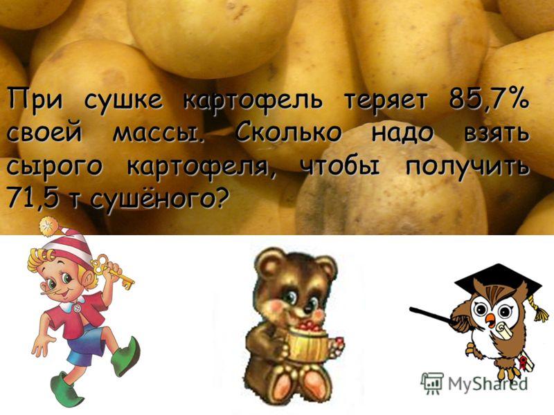 При сушке картофель теряет 85,7% своей массы. Сколько надо взять сырого картофеля, чтобы получить 71,5 т сушёного?