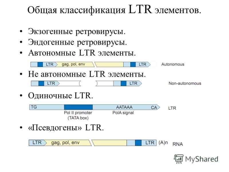 Общая классификация LTR элементов. Экзогенные ретровирусы. Эндогенные ретровирусы. Автономные LTR элементы. Не автономные LTR элементы. Одиночные LTR. «Псевдогены» LTR..