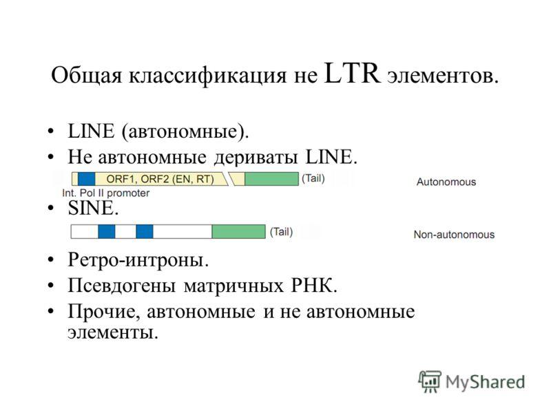 Общая классификация не LTR элементов. LINE (автономные). Не автономные дериваты LINE. SINE. Ретро-интроны. Псевдогены матричных РНК. Прочие, автономные и не автономные элементы.