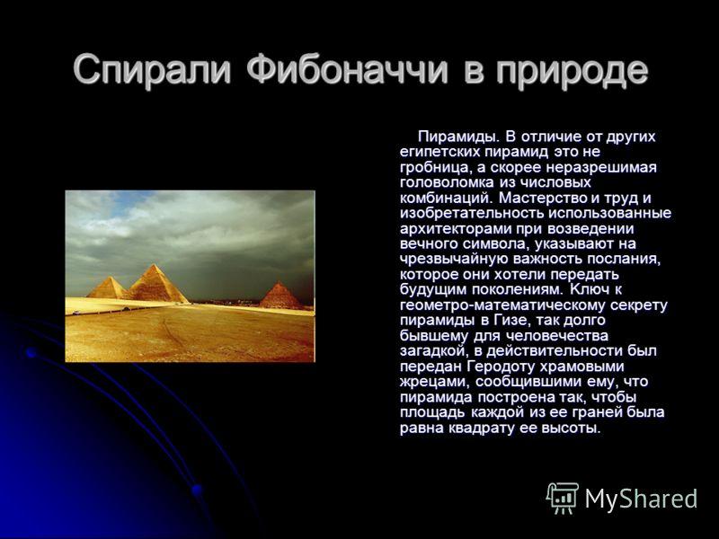 Спирали Фибоначчи в природе Пирамиды. В отличие от других египетских пирамид это не гробница, а скоpее неразрешимая головоломка из числовых комбинаций. Мастерство и труд и изобретательность использованные архитекторами при возведении вечного символа,