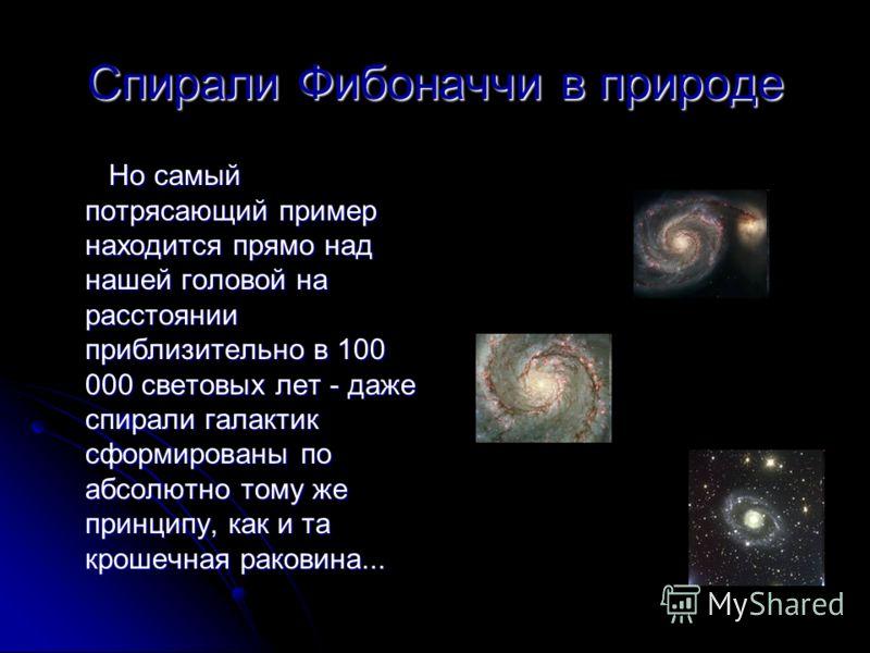 Спирали Фибоначчи в природе Но самый потрясающий пример находится прямо над нашей головой на расстоянии приблизительно в 100 000 световых лет - даже с