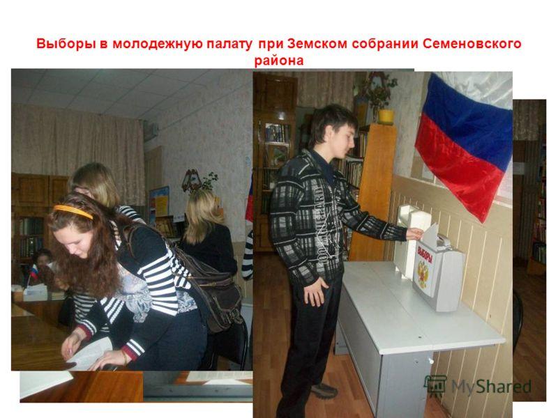 Выборы в молодежную палату при Земском собрании Семеновского района