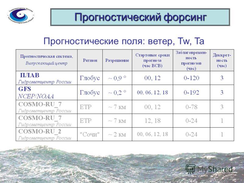 Прогностический форсинг Прогностические поля: ветер, Tw, Ta