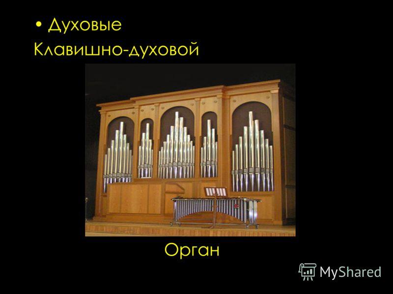 Духовые Клавишно-духовой Орган