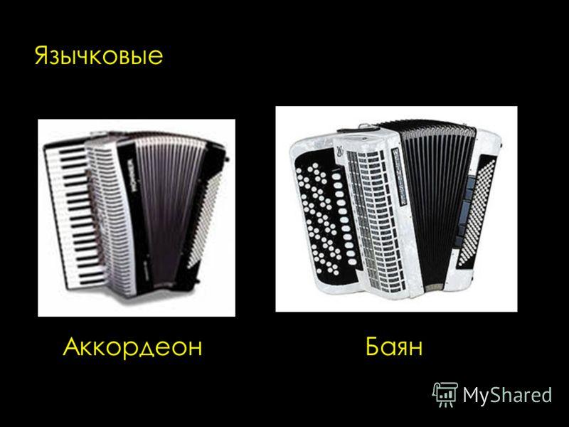 Язычковые Аккордеон Баян