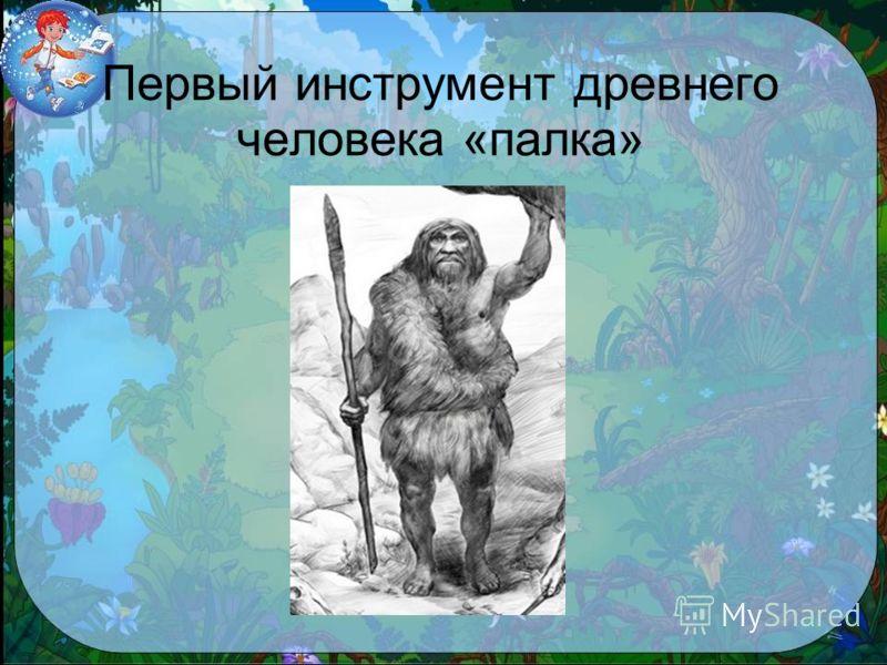 Первый инструмент древнего человека «палка»