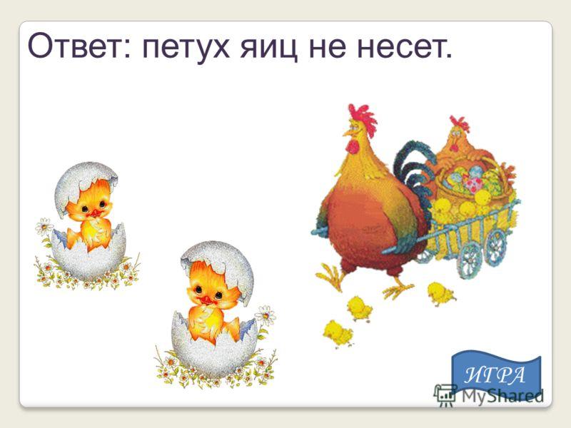 Ответ: петух яиц не несет. ИГРА
