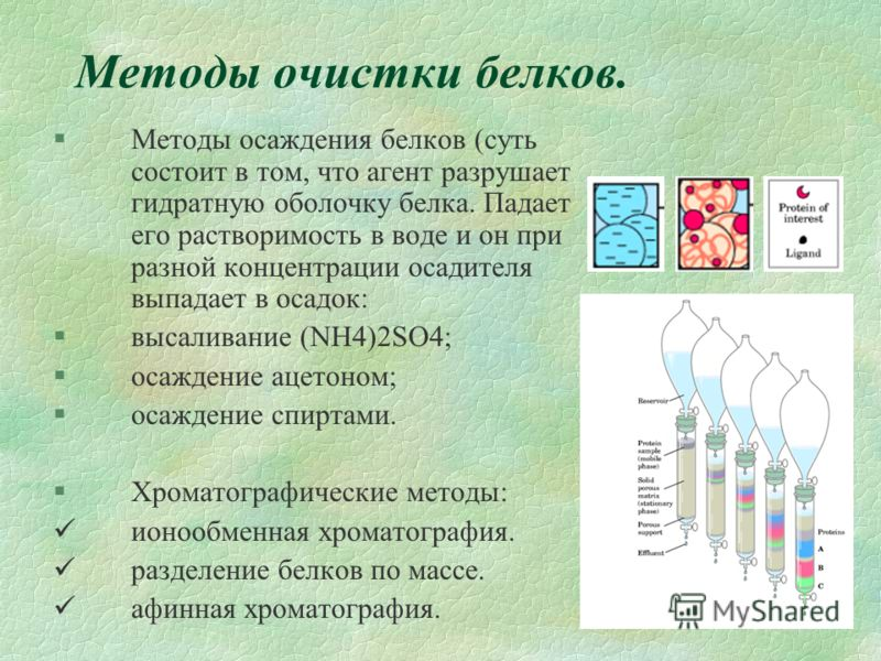 Методы очистки белков. §Методы осаждения белков (суть состоит в том, что агент разрушает гидратную оболочку белка. Падает его растворимость в воде и он при разной концентрации осадителя выпадает в осадок: §высаливание (NH4)2SO4; §осаждение ацетоном;
