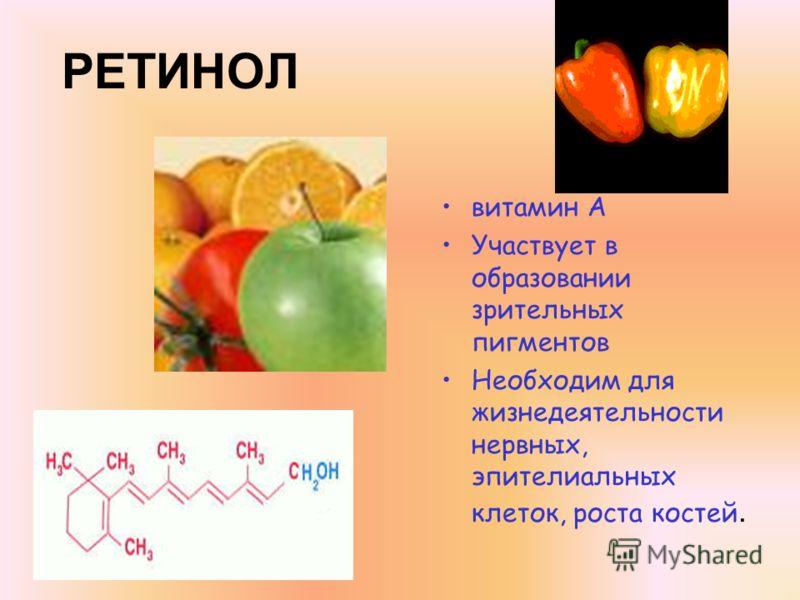 РЕТИНОЛ витамин А Участвует в образовании зрительных пигментов Необходим для жизнедеятельности нервных, эпителиальных клеток, роста костей.