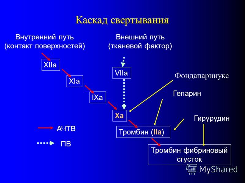Каскад свертывания XIIa XIa IXa Внутренний путь (контакт поверхностей) Xa Внешний путь (тканевой фактор) VIIa Тромбин (IIa) Тромбин-фибриновый сгусток АЧТВ ПВ Гепарин Гирурудин Фондапаринукс