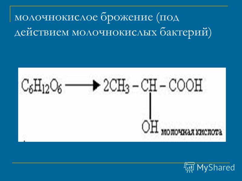 молочнокислое брожение (под действием молочнокислых бактерий)