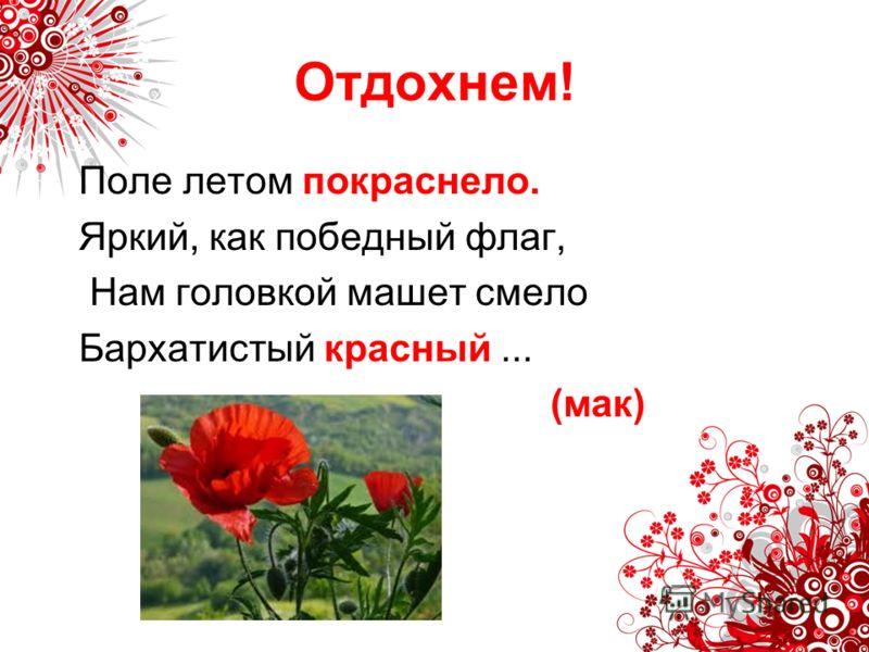 Поле летом покраснело. Яркий, как победный флаг, Нам головкой машет смело Бархатистый красный... (мак)